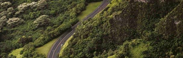 Landstraße im grünen Waldgebiet